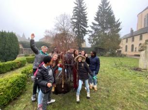 Tree planting 26 Jan 2
