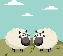 cartoon_sheep_design_vector_559278